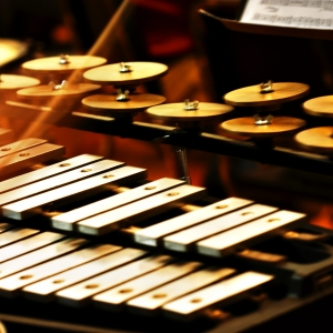 A xylophone, close up