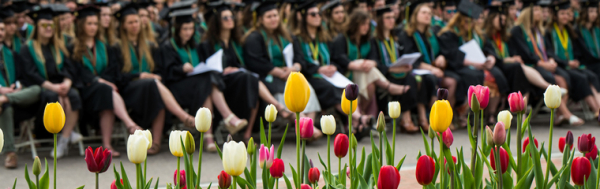tulips in front of a row of seated graduates