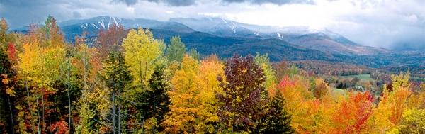Mountain, ski trails, fall foliage