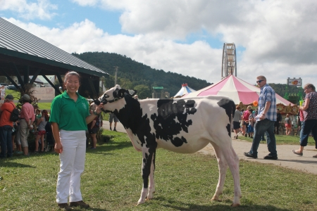 Student with cow at fair