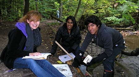 students conducting stream diversity lab