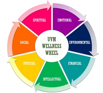 This is the UVM Wellness Wheel. It represents each area of wellness to help you focus on a whole health perspective.  The 7 dimensions represented in this wheel are: Emotional, Environmental, Financial, Intellectual, Physical, Social and Spiritual.