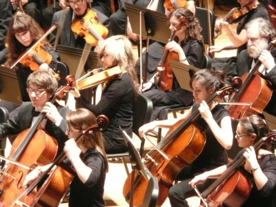Close up of the orchestra cello section.