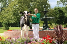 Student posing with show ready cow