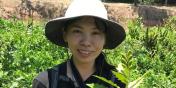Gund Graduate Fellow Qing Ren