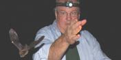 Kilpatrick shining headlamp on flying bat