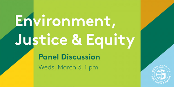 Promotional graphic for the Environment, Justice & Equity Panel Discussion