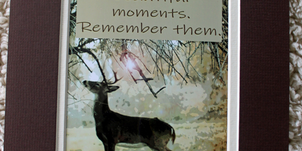 """A picture of a deer by a tree with the phrase """"Life is full of beautiful moments. Remember them."""""""