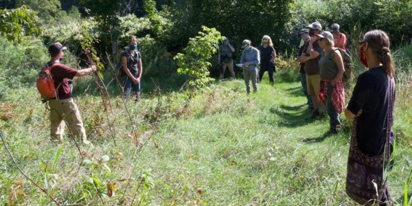 A group of people in a field talking about tree saplings.