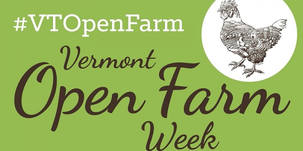 Vermont open farm week - image of chicken with hashtag VT Open Farm