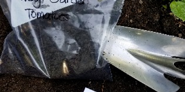 Soil in a plastic bag with a Soil Test Submission Form