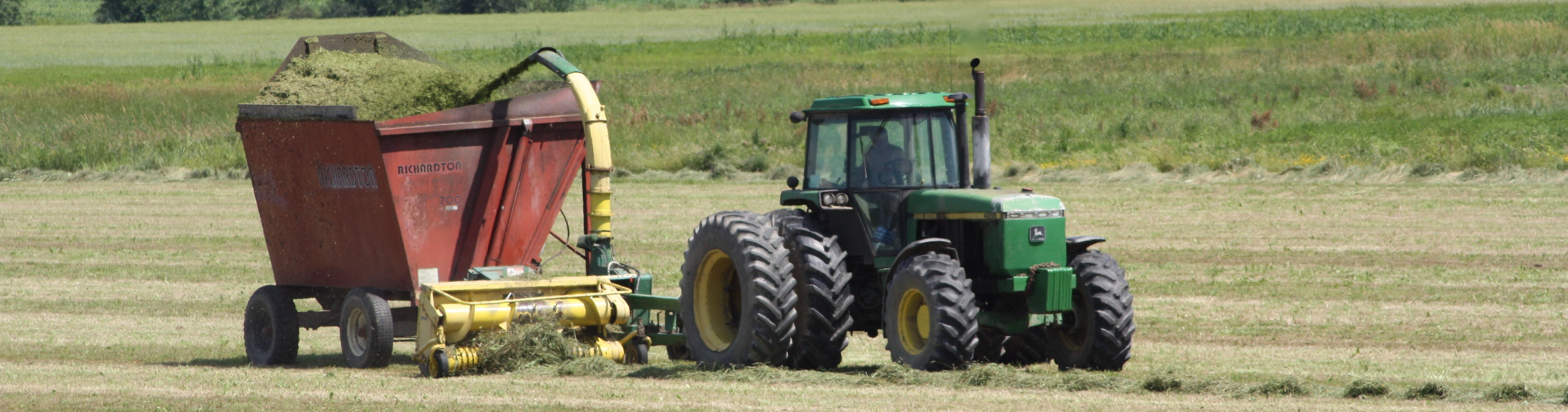 cutting hay in field