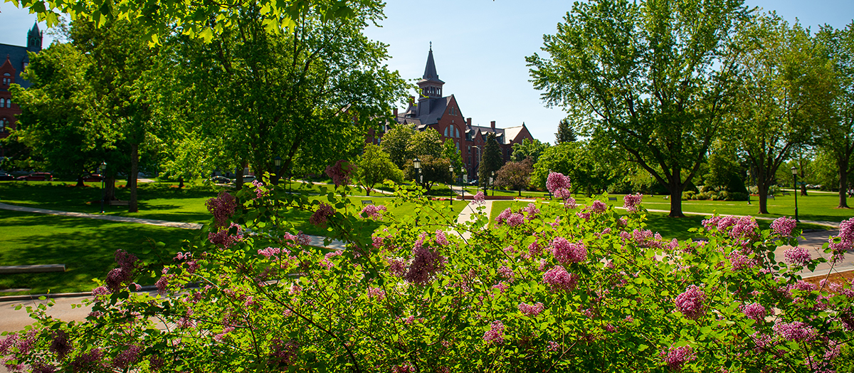 Grassy lawn and flowers of UVM Green, with Old Mill in the background