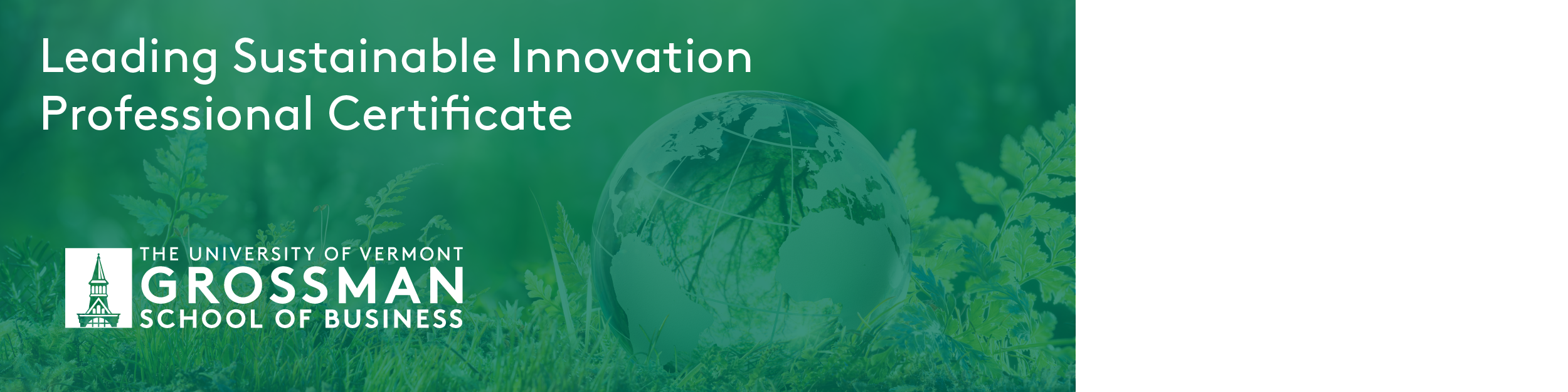 uvm, grossman school of business, leading sustainable innovation professional certificate