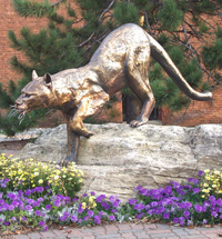 University of Vermont images