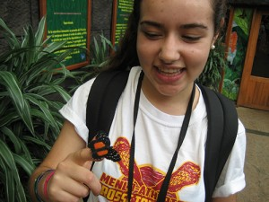 resize_butterfly