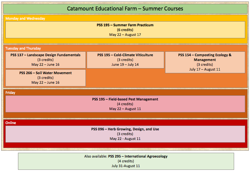Catamount Farm Summer Courses