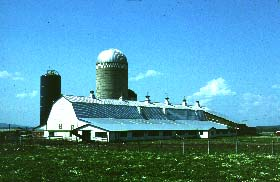 A familiar Ground Stable Barn with silos in Addison, Vermont
